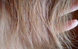 Масло для волос шаума