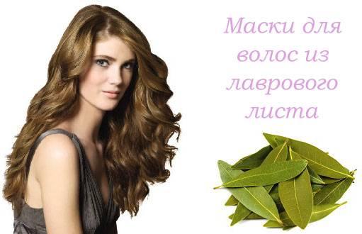 Домашние маски для волос, отвар лавровых листьев