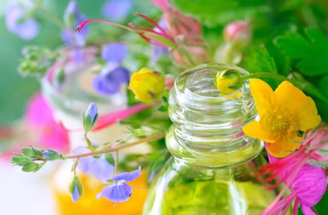 Экстракты растений для лукового шампуня