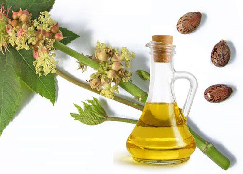 ИНСТРУКЦИЯ ДЛЯ ПРИМЕНЕНИЯ СРЕДСТВА ORGANIC OIL FOR HAIR NATURAL